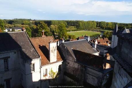 Visiter-la-cite-royale-de-Loches-chateaux-de-la-loire15_gagaone