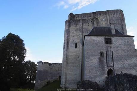 Visiter-la-cite-royale-de-Loches-chateaux-de-la-loire35_gagaone