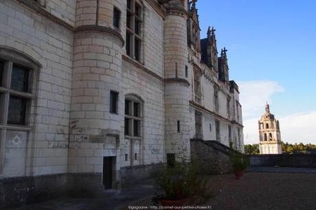 Visiter-la-cite-royale-de-Loches-chateaux-de-la-loire14_gagaone