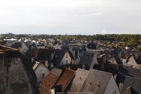 Visiter-la-cite-royale-de-Loches-chateaux-de-la-loire27_gagaone