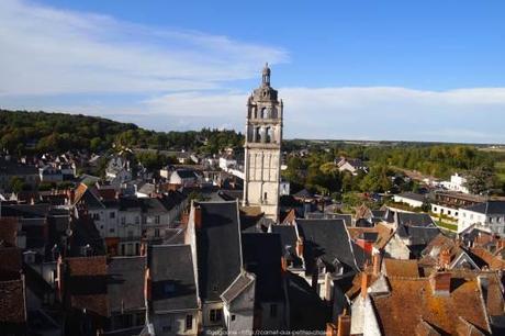 Visiter-la-cite-royale-de-Loches-chateaux-de-la-loire26_gagaone