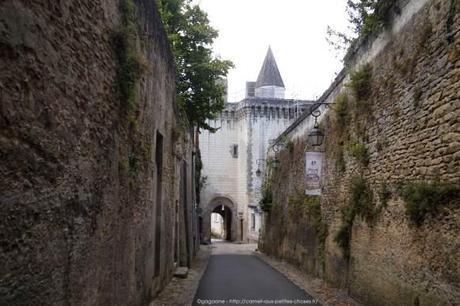 Visiter-la-cite-royale-de-Loches-chateaux-de-la-loire57_gagaone