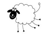 mouton cinq pattes