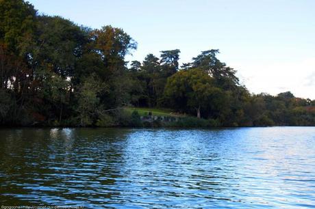 nantes-bateau-sur-l-erdre-ruban-vert-8_gagaone