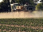 L'industrie chimique pilote l'évaluation risques pesticides qu'elle produit