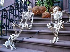 Yorkais décorent leur maison pour Halloween