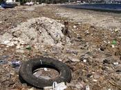 jarret boeuf biomethane defi waste energy