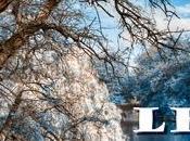 quatre saisons Daniel Beau construit parallélisme entre temps, saisons, monde extérieur l'intérieur hommes