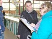 Marans ligne Marans-La Rochelle, dossier déraille