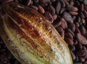 Achetez chocolat 'Max Havelaar' pour soutenir Producteurs Cacao