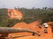 L'influence géoéconomique Cameroun Afrique centrale