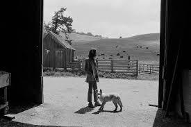 Blonde et Idiote Bassesse Inoubliable********************Harvest de Neil Young