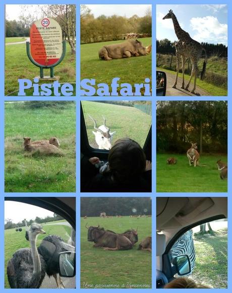 piste-safari-planete-sauvage