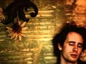 Playlist spéciale Jeff Buckley