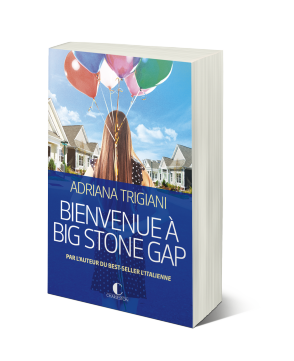 Bienvenue_a_big_stone_gap_3D