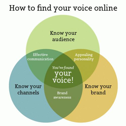 how-to-find-your-voice-online1