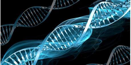 Des chercheurs français sont parvenus à mettre en évidence un gène de susceptibilité impliqué dans la survenue des AVC chez le jeune adulte. SUPERSTOCK/SUPERSTOCK/SIPA