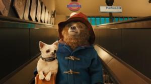 Paddington-subway-dog