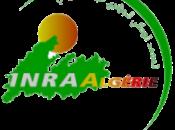 Agroalimentaire Finalisation quatre projets soumettre Commission européenne pour financement (www.inraa.dz/)