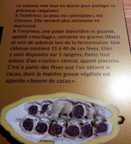 Visite de la fabrique de chocolat Valrhona
