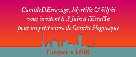 ApéroBlog Lyonnais N°6