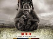 CINEMA: [VOD] Virunga (2014), Congo Congo!
