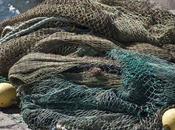 stocks poissons vont mieux, pourquoi pêche
