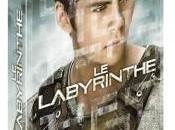 édition collector pour labyrinthe