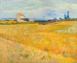 Van_Gogh_Korenveld.jpg