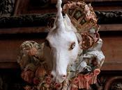 Calendrier Trophée licorne Unicorn trophy