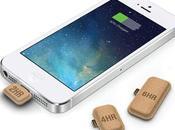 batterie biodegradable usage unique