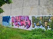 Soler/Peysa/Onix (NLP/HLM)