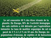 destruction sols l'agriculture intensive Lydia Claude Bourguignon, agronomes,