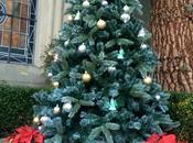 Joyeux Noël Merry Christmas Feliz Navidad
