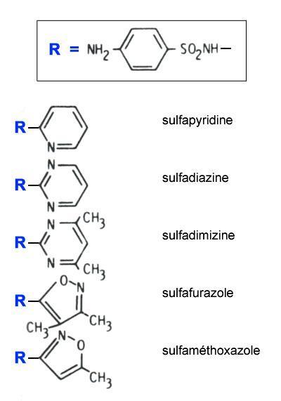 sulfamides