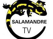 rendez-vous avec Pluton Didier Lustig Salamandre demain