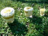 tiramisu au kiwi jaune une recette d'assiettes et gourmandises qui réchauffe les hivers tristounets