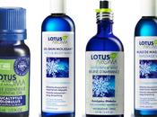 Victime saison grippe rhume? L'Eucalyptus Globulus Lotus Aroma rescousse!
