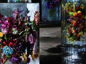 Iced Flowers Azuma Makoto