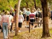 marche groupe, bienfaits bien réels pour santé