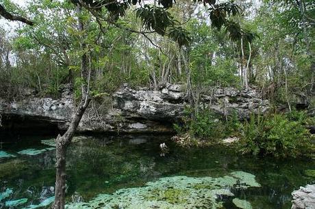 Le cenote K41