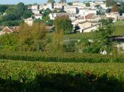 Premier aperçu millésime 2014 rive droite Bordeaux