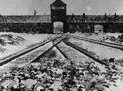 Libération d'Auschwitz, après