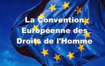 Rapport d'activité de la Cour européenne des droits de l'homme
