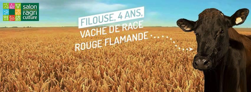 Salon de l'Agriculure 2015 - Filouse la Star du salon