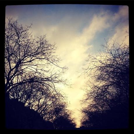 Un nouveau jour se lève (6 février)