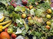 Prévention réduction gaspillage alimentaire Lancement l'Appel Projets 2015