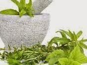 soigner naturel, contre rhume phytothérapie