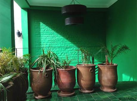 Le Jardin - resto Marrakech ©lovmint