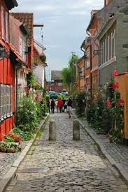 Pourritures Du Danemark